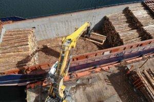 Read more about the article В июле было выдано всего 86 лицензий на лесное хозяйство, в то время, как импорт древесины продолжается