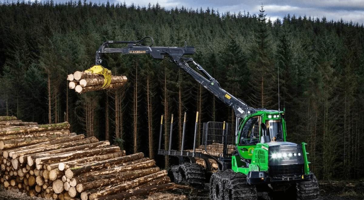 You are currently viewing Рынок древесины в Норвегии
