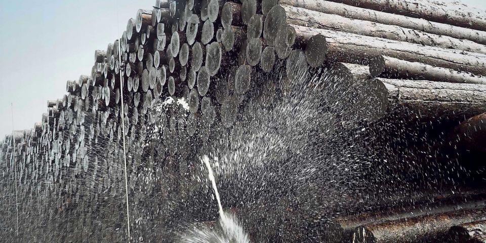 You are currently viewing Издано пособие по созданию и эксплуатации мокрых складов древесины
