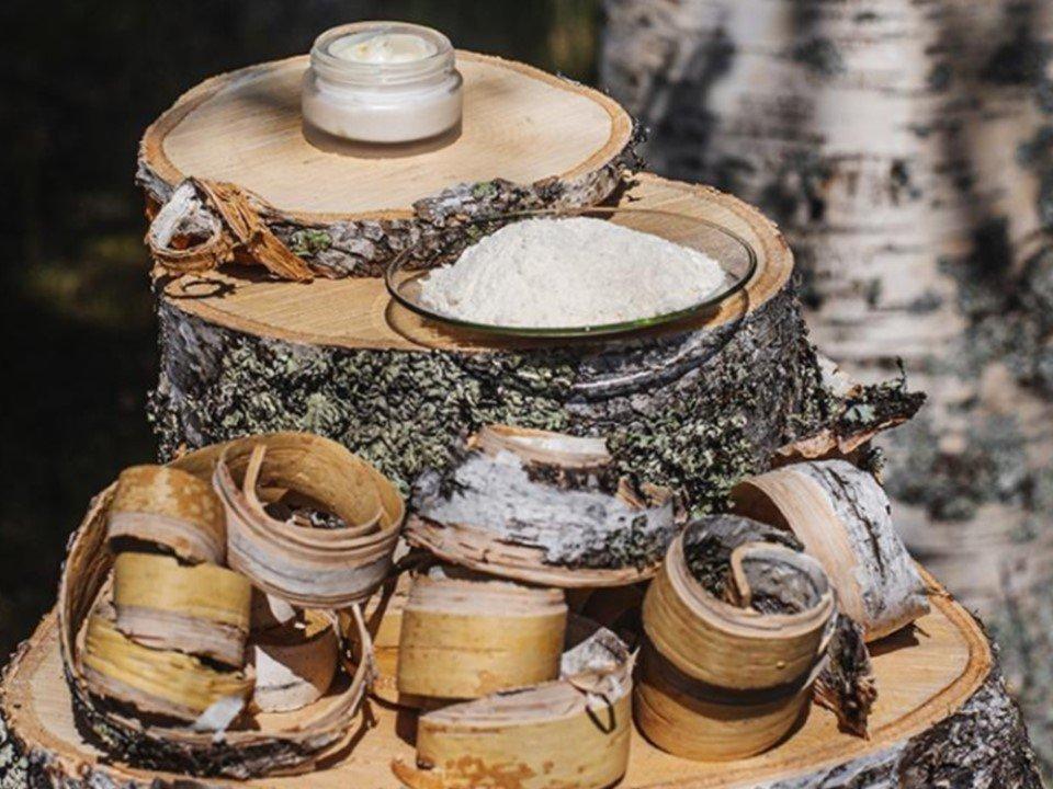 You are currently viewing Metsä Spring инвестирует в стартап по производству ценных биоактивных продуктов из бересты