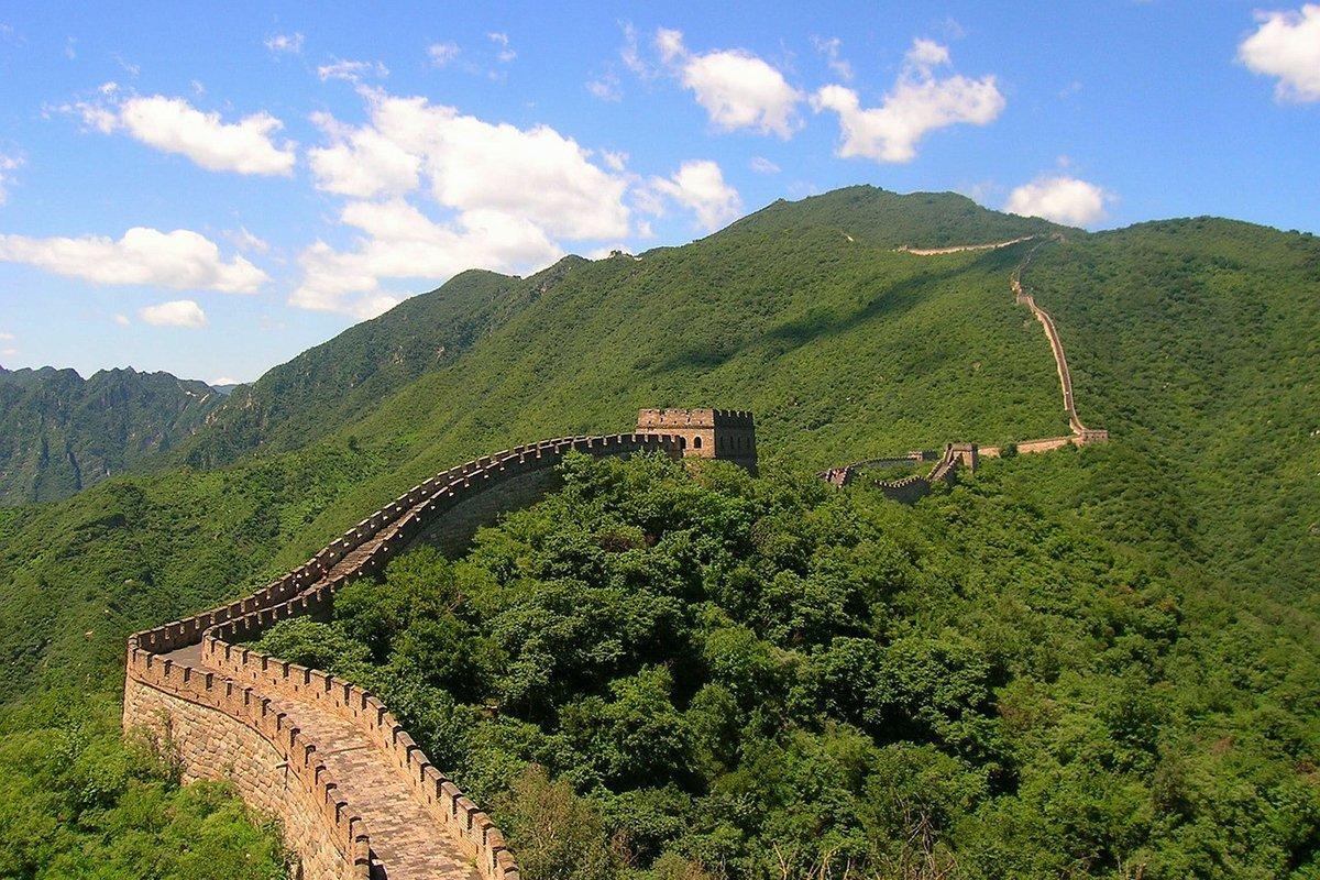 Read more about the article Китай на 17% сократил импорт пиломатериалов