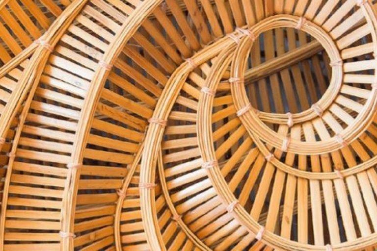 Read more about the article Циркулярная биоэкономика: неиспользованный бизнес-потенциал для устойчивого будущего