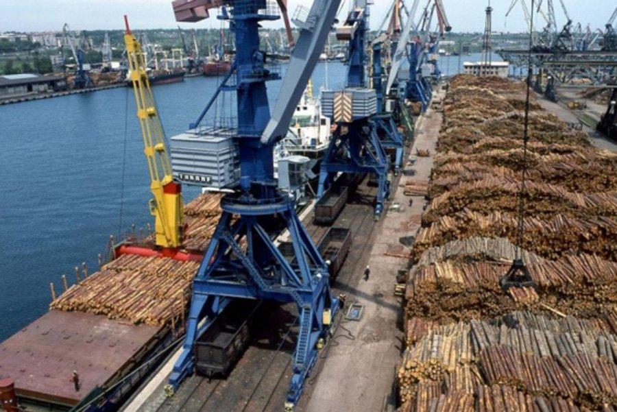 You are currently viewing Спрос на российскую еловую древесину снижается