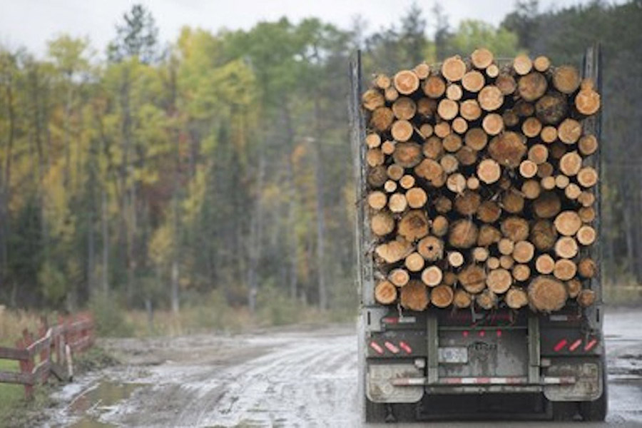 Read more about the article GreenFirst завершает приобретение заводов на северо-востоке Онтарио