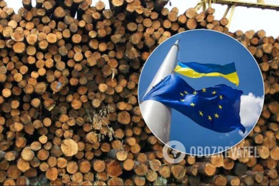 Read more about the article Отмена моратория на экспорт леса поставит крест на украинской промышленности: бизнес ответил Кабмину