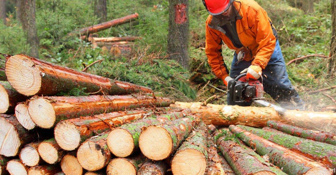 You are currently viewing Из-за отсутствия древесины цены на мебель в Чехии резко выросли.
