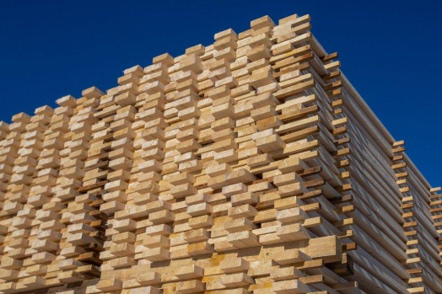 You are currently viewing Лесная промышленность Австрии  отказывается от лесной стратегии ЕС