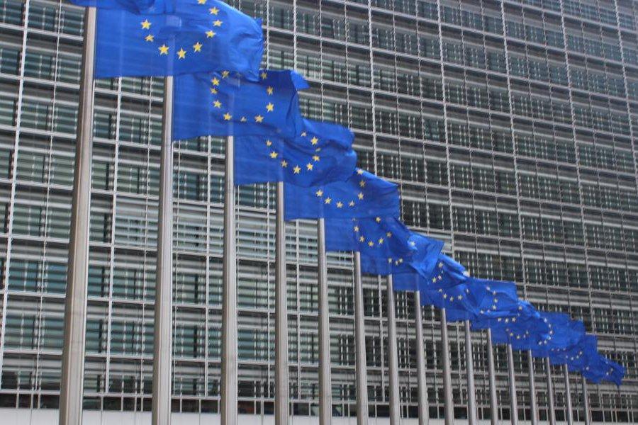 Read more about the article Европейская комиссия проводит необъявленные проверки в секторе целлюлозы