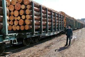 Read more about the article Экспорт круглого леса из России в Китай сократился