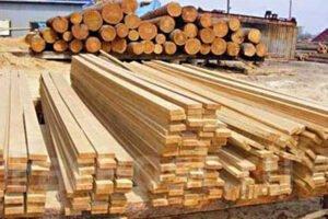 Read more about the article БУТБ готова нарастить продажи лесопродукции из Псковской области