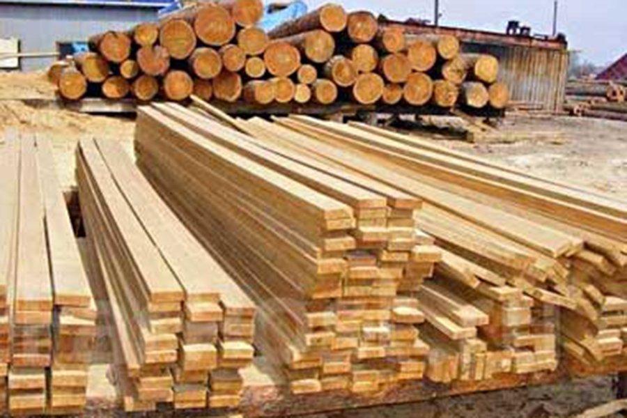 You are currently viewing БУТБ готова нарастить продажи лесопродукции из Псковской области